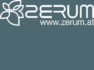 zerum_logo_33x120[1]_320x240